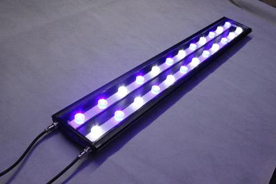 LED-aquarium-lights-coral