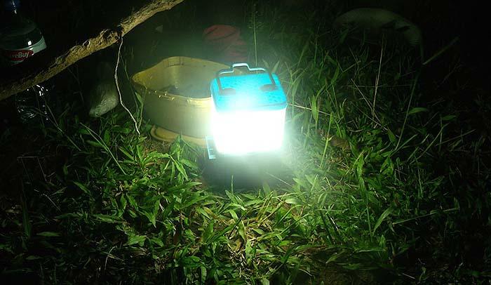 LED Pros Tag Archives: salt water usagesalt water usage Archives - LED Pros